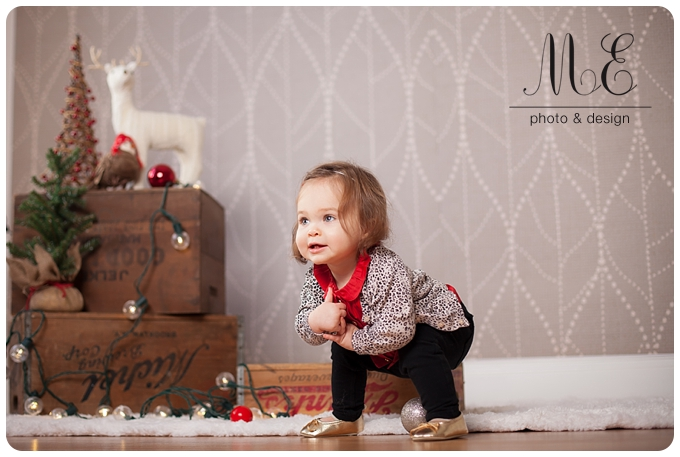 Holiday Portrait Photography Media PA Philadelphia PA Photographer