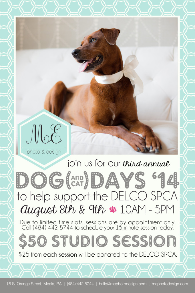 Delco SPCA Pet Photographer ME Photo & Design Media PA