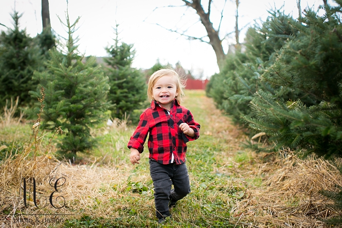 Linvilla Christmas Tree Family Portrait Session ME Photo & Design