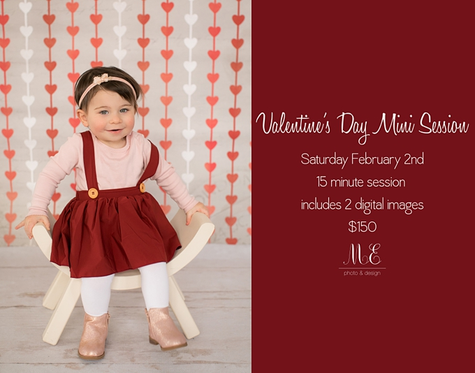 Valentine S Day Philadelphia Pa Baby Child Portrait Pet Wedding Documentary And Commercial Photography